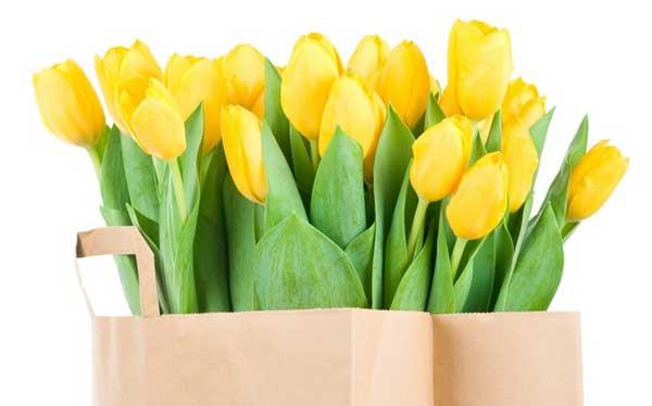 Как отпраздновать 8 марта