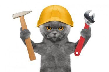Веселая викторина ко Дню строителя