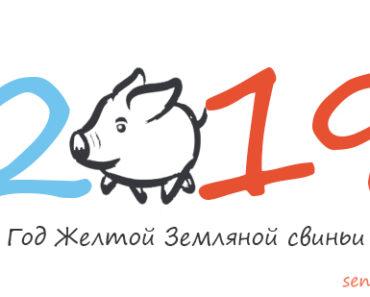 Сценарий Год Свиньи для дома